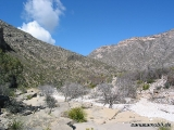 Guadalupe Mountains NP 03