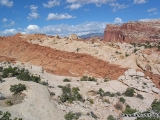 Capitol Reef NP 07