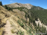 Pecos Wilderness 08