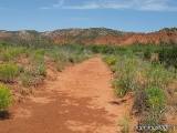 Caprock Canyon SP 05